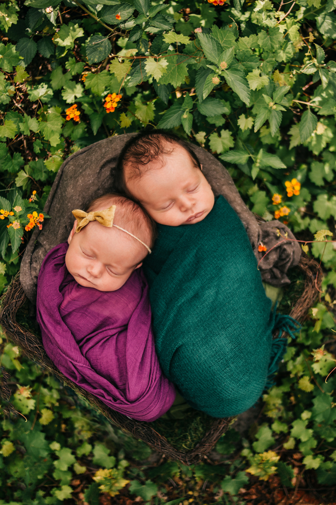 outdoor twins newborn photographer fort myers florida