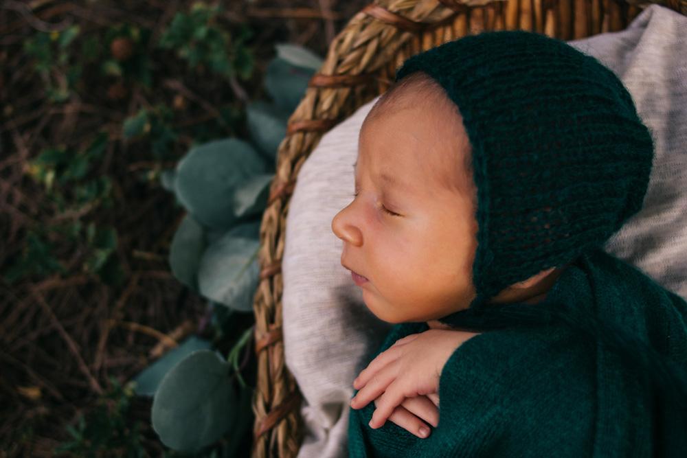 Mateo   Cape Coral Newborn Photographer