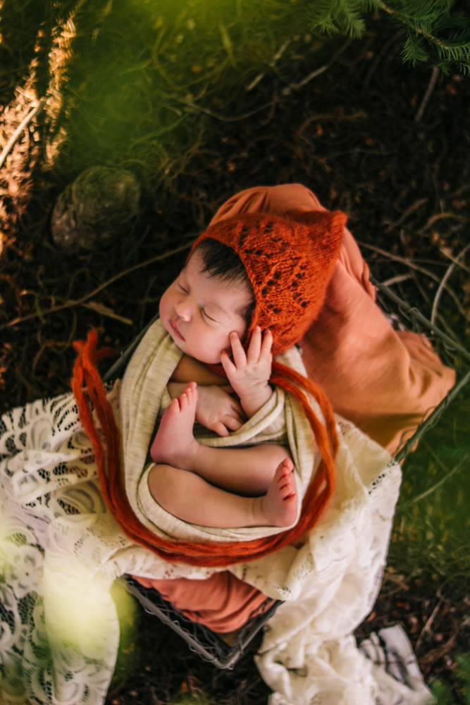 Newborn Girl in a wire basket wrapped up in a neutral cloth wrap. She is wearing a red gnome bonnet. This photo is outside under a tree. Outdoor newborn photographer fort myers Florida