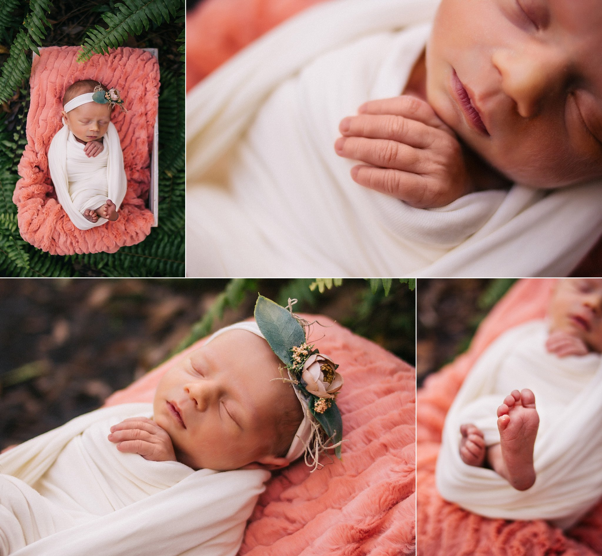 North Fort Myers Newborn Photography