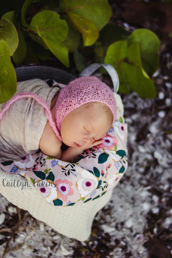 Charlotte   Sanibel Beach Newborn Photography