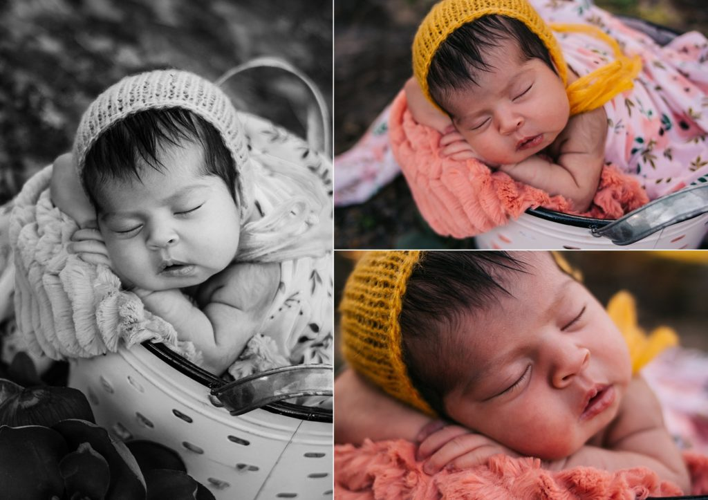 Lehigh Acres Newborn Photographer